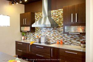 Home Contemporary Kitchen Design