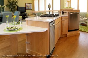 Contemporary Kitchen Cabinet Renovation